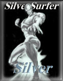 The Silver Surfer Silver Award